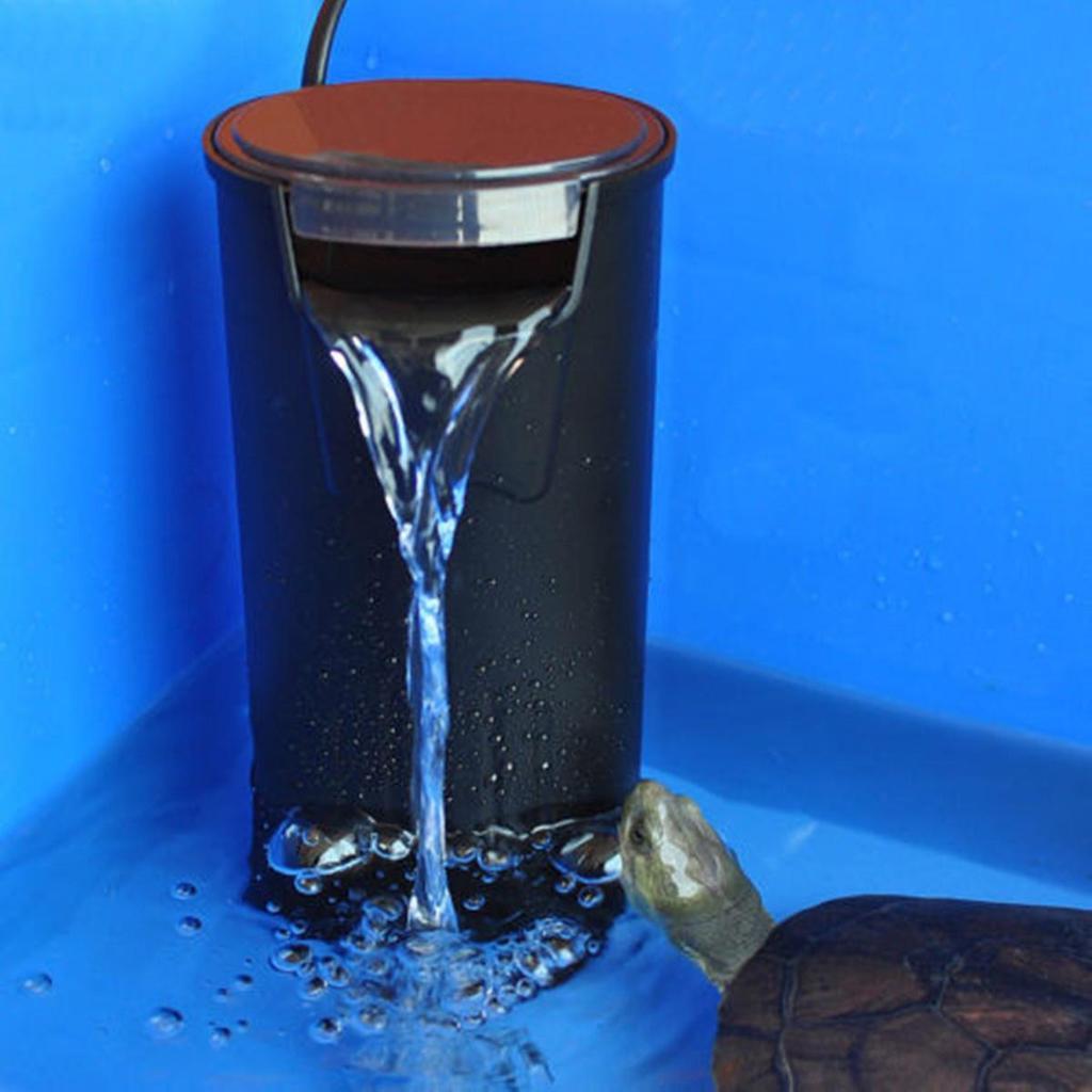 Фильтр для аквариума с черепахами