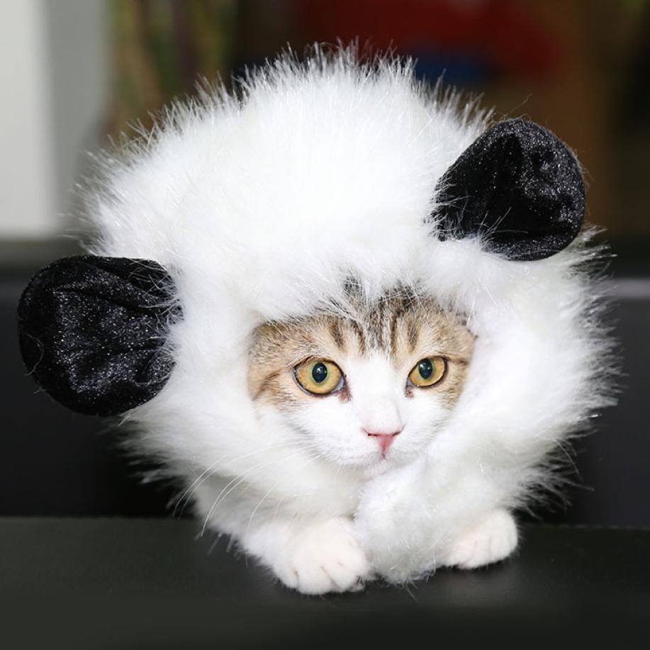 Lovely Pet Costume Cute Puppy Velvet Hat For Cat Dog Dress Up Headgear With Ears
