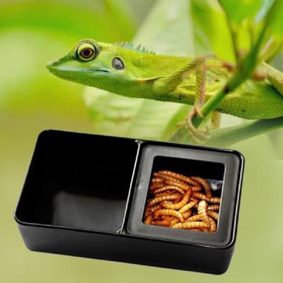 Spider Cleaning Litter Frog Wood Tweezers Tool Reptile Feeding Terrarium