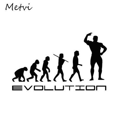 "VOLLEYBALL EVOLUTION Vinyl Decal Sticker-6/"" Wide White Color"
