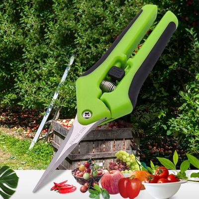 Stainless Steel Flower Branch Scissors Pruning Shears Thinning Fruit Thinning Grape Shears Straight Elbow Garden Gardening Shears