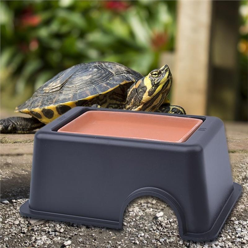Fragile Reptile Humidifier Hiding Toy Buy At A Low Prices On Joom E