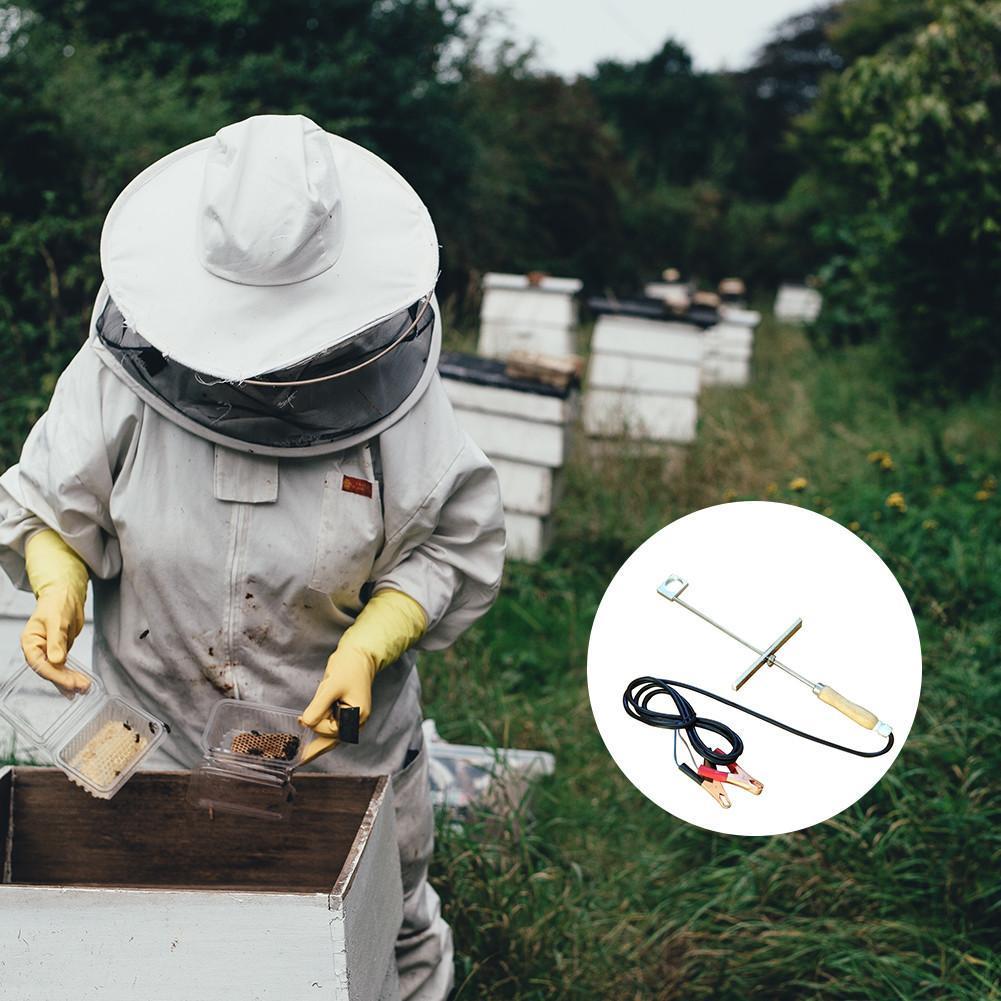 12V Oxalic Acid Vaporizer Evaporator Beekeeping Varroa ment Bee Hive Fumigation