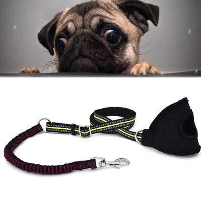 Sotnos Dog Anti Jolt Lead Teal