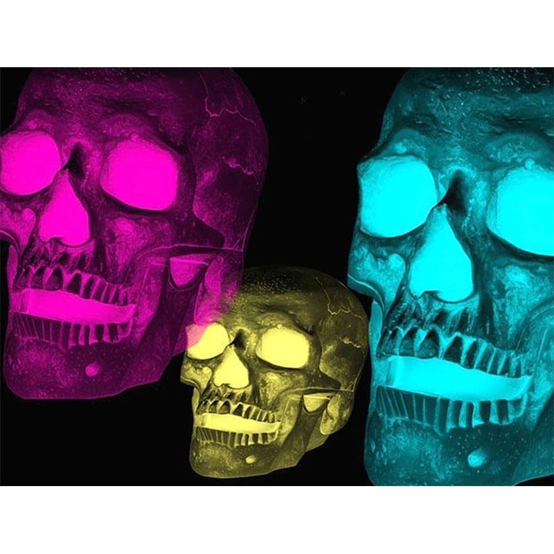 5D DIY Full Drill Diamond Painting Beauty Skull Cross Stitch Embroidery Kit S1