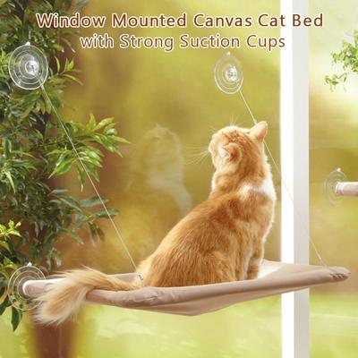 buy cat shelves