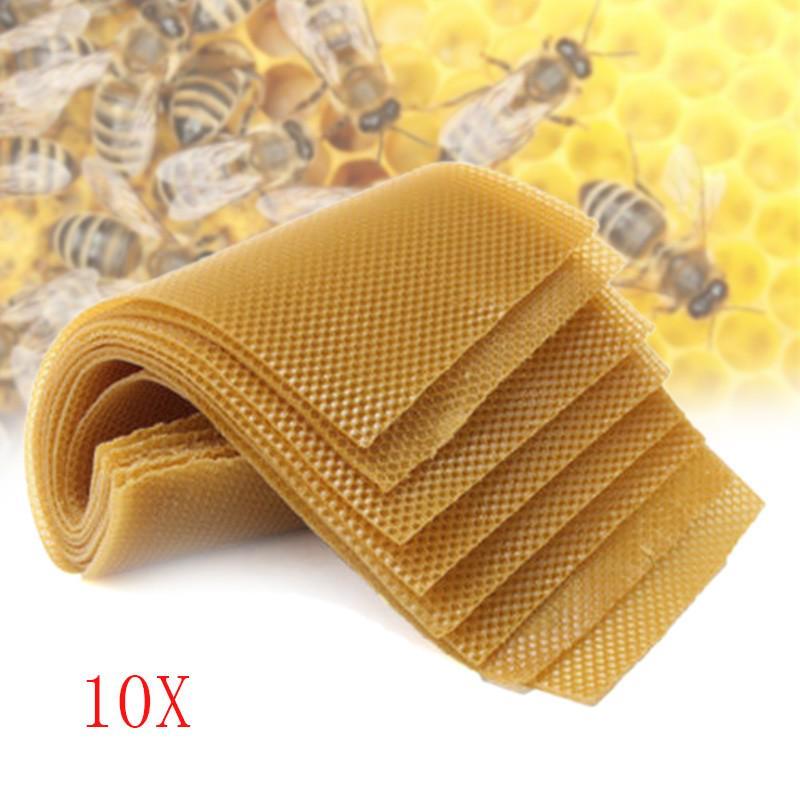 5Pcs Beekeeping Honeycomb Foundation Wax Frames Honey Hive Equipment Tool Set