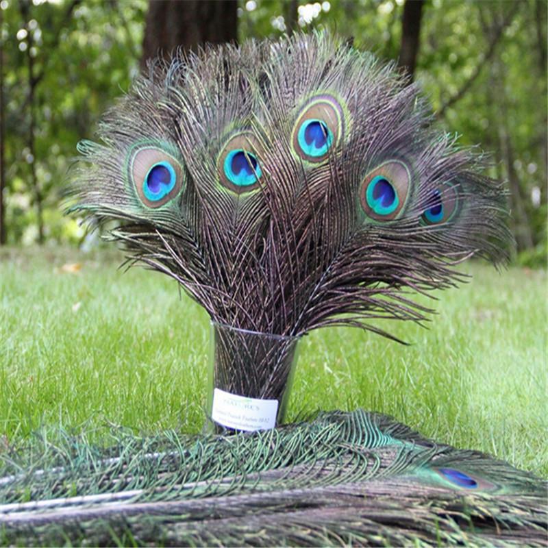 10шт 25x30cm красоты ремесло природных павлиньи перья 10-12 дюймов свадьбы партии высокого качества фото