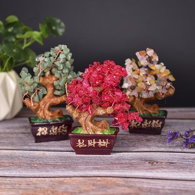 Money Wealth Tree Feng Shui Lucky Rich Tree Natural Pretty