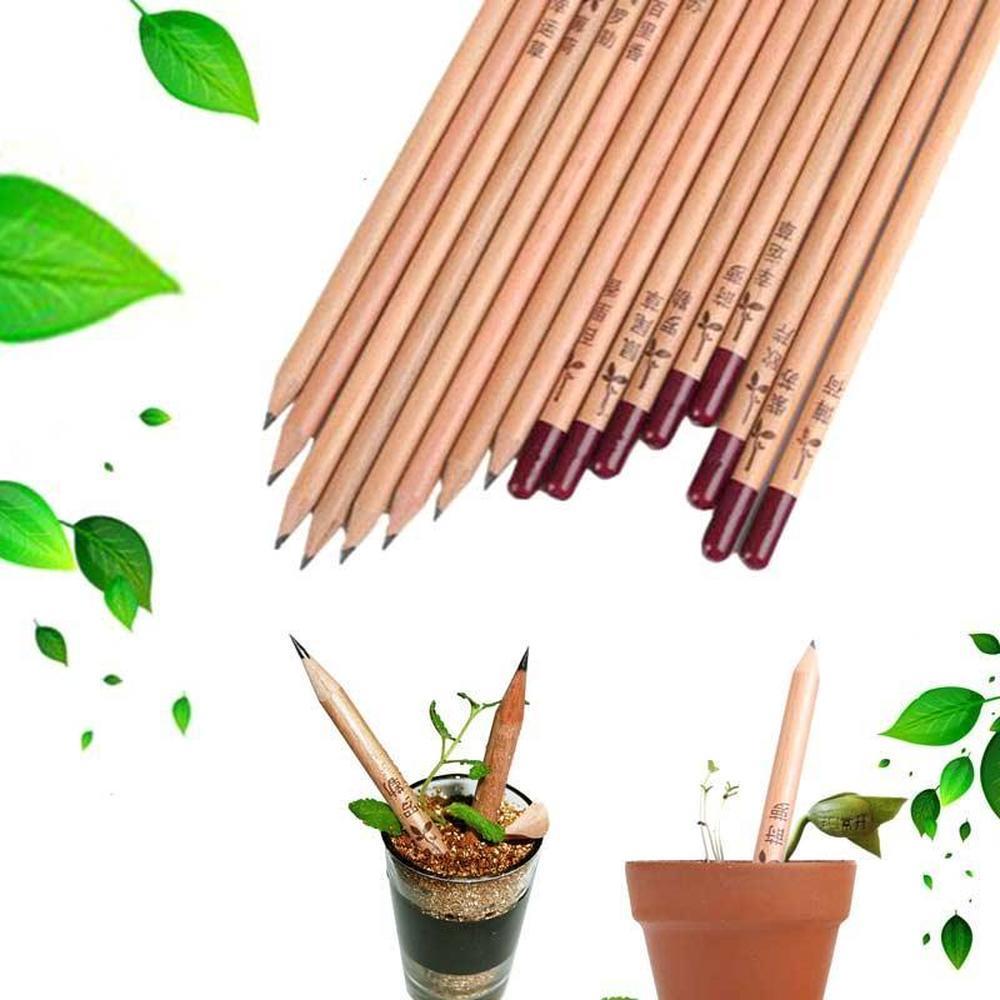 creion negru plantar