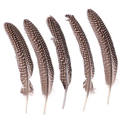 50pcs teint pintade plumes pour bricolage Chapeaux Coiffure Broche decor Mixed Color