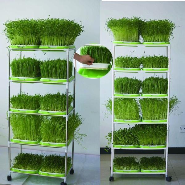 Soilless Hydroponic Seed Nursery Plant Pot Sponge Cultivation Tray 96Pcs
