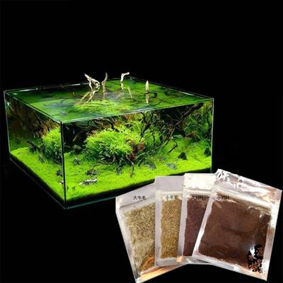 Fish Aquatic Pets Prices From 3 Usd And Real Reviews On Joom