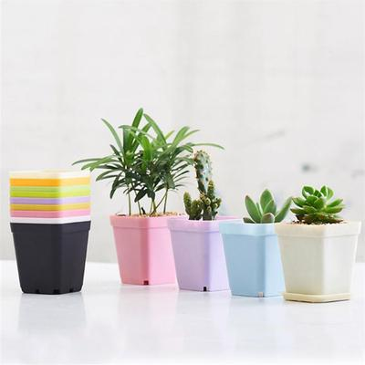 Buy Cute Flower Pots At Affordable Price From 3 Usd Best Prices Fast And Free Shipping Joom