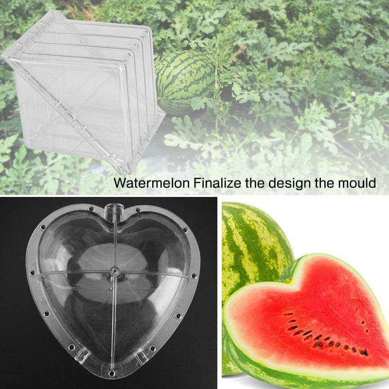 Fruit Shape Mould Melon Forming Mold Watermelon Strawberry Garden Orchard Tool