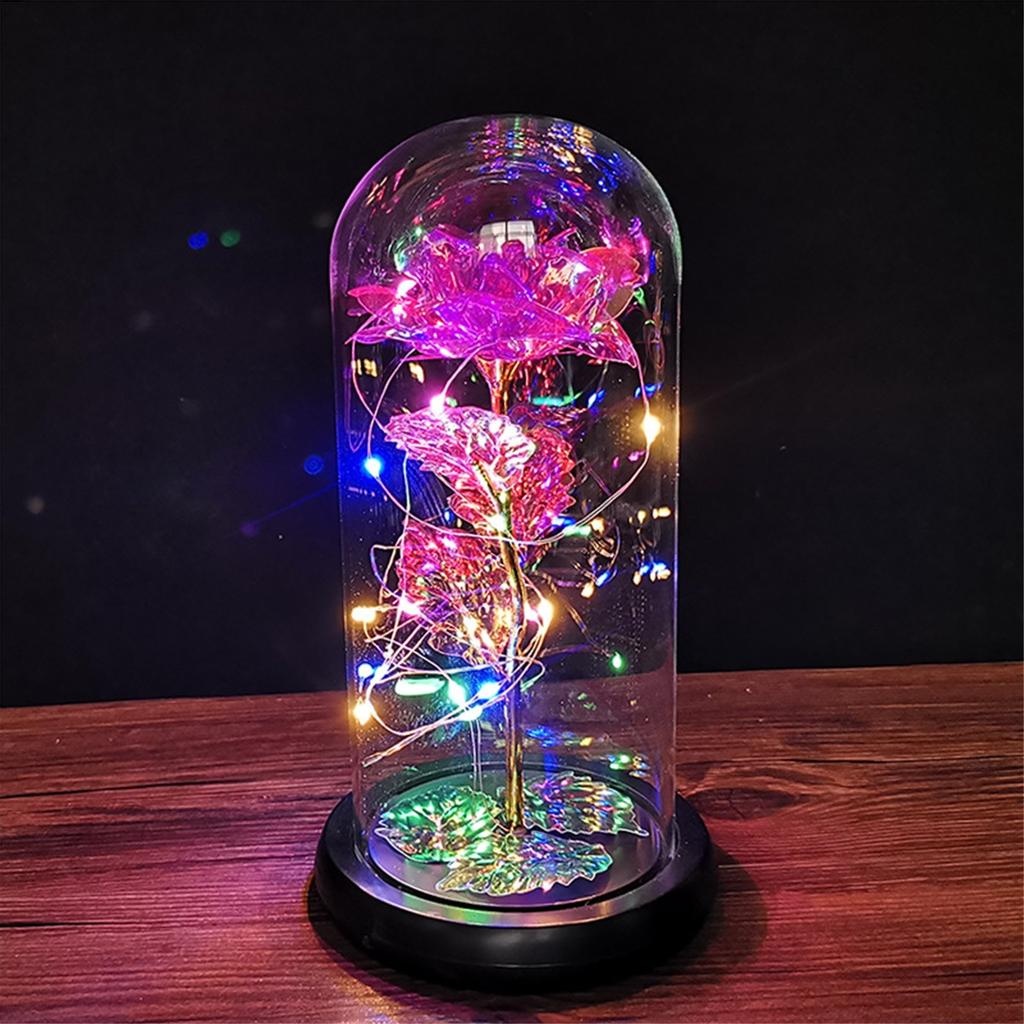 Details about  /Rose in Glass LED Wishing Bottle Night Lamp Decor for Christmas Valentine/'s Gift