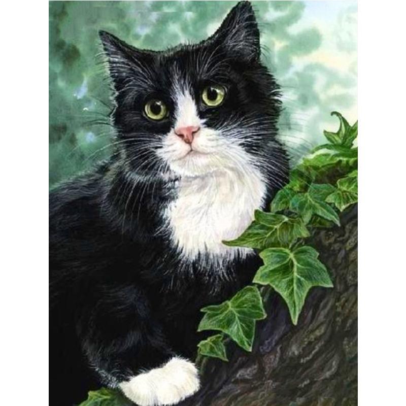 5d Diamond Painting full diamond Black Cat Cross stitch Diamond Painting home decoration kit