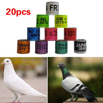 100Pcs Bird Poultry Parrot Chicks Plastic 1-100 Numbered