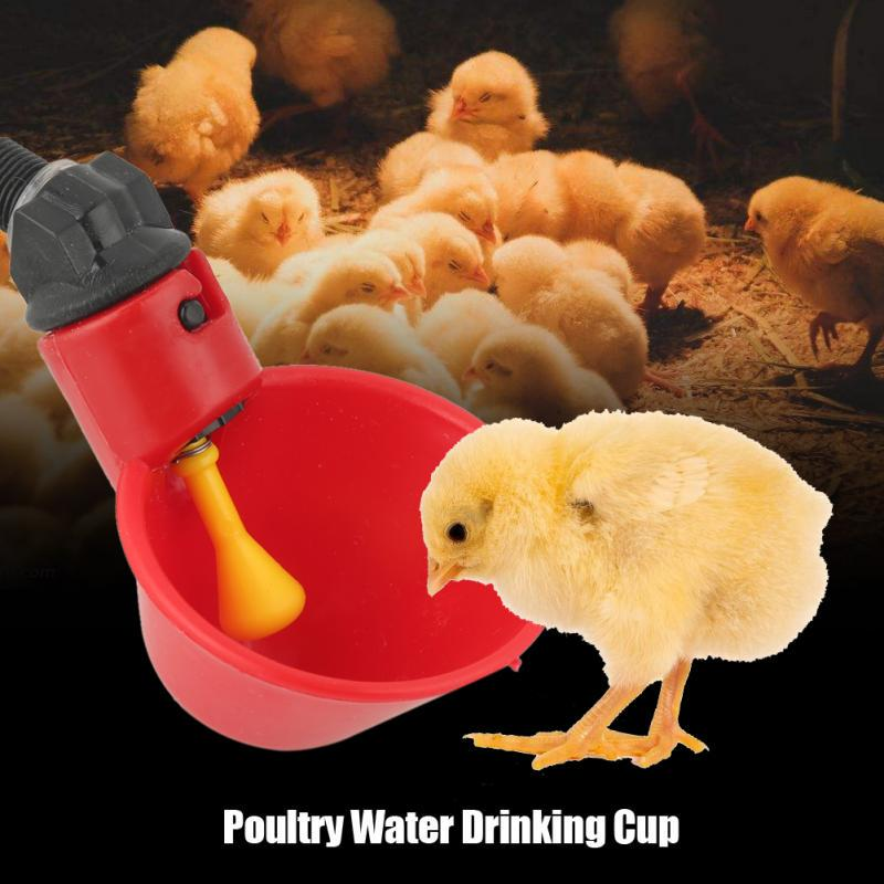 10 Pack New Plastic Automatic Chicken Hen Drinker Poultry Water Drinking Cups
