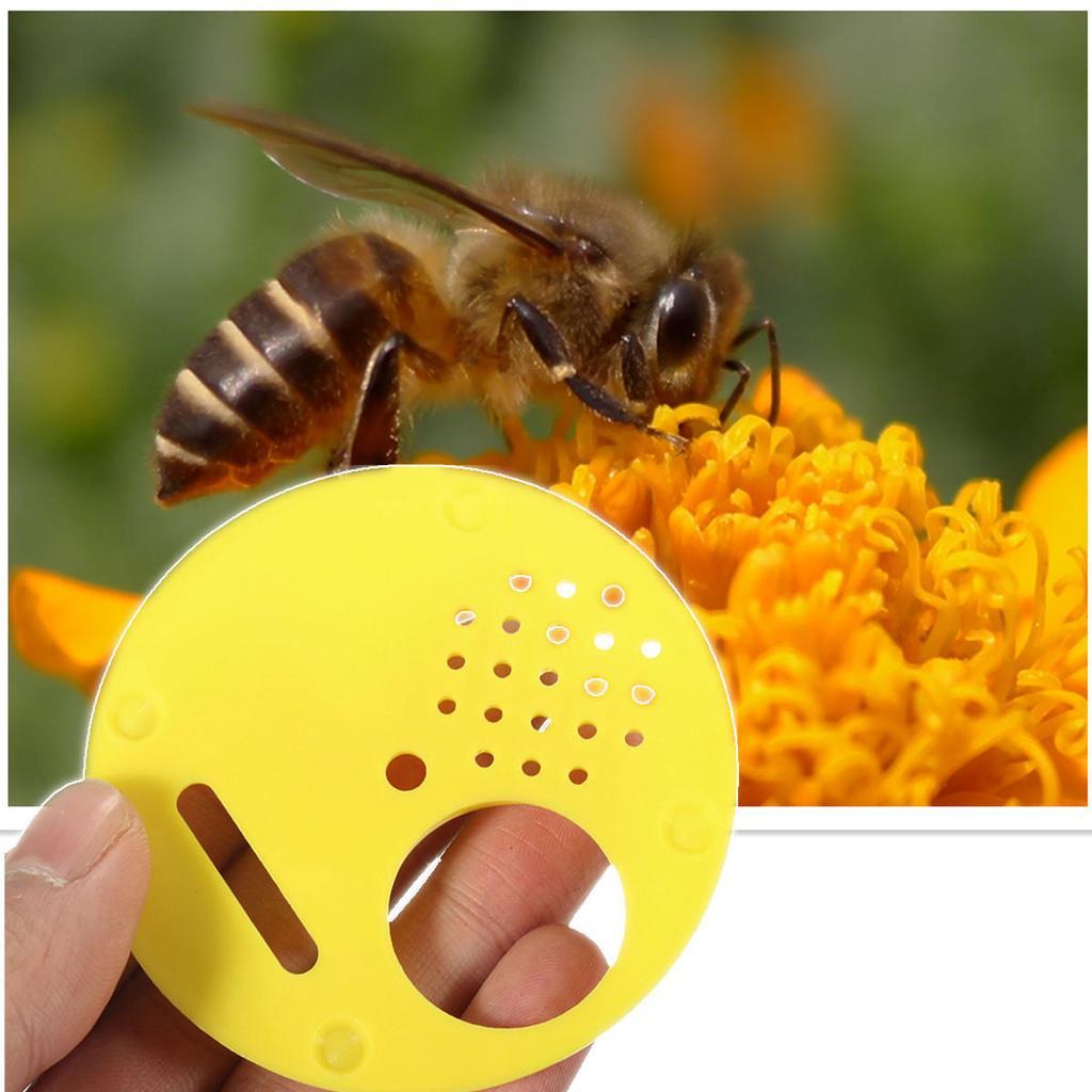 Edelstahl Imker Biene Bienenstock Nuc Box Eingangstür Bienenzucht Ausrüstung