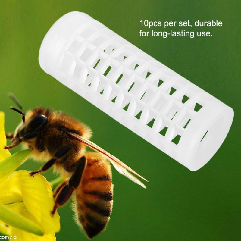 10 PCS Beekeeping Rearing Cup Kit Queen Bee Cages Beekeeper Equipment Tools