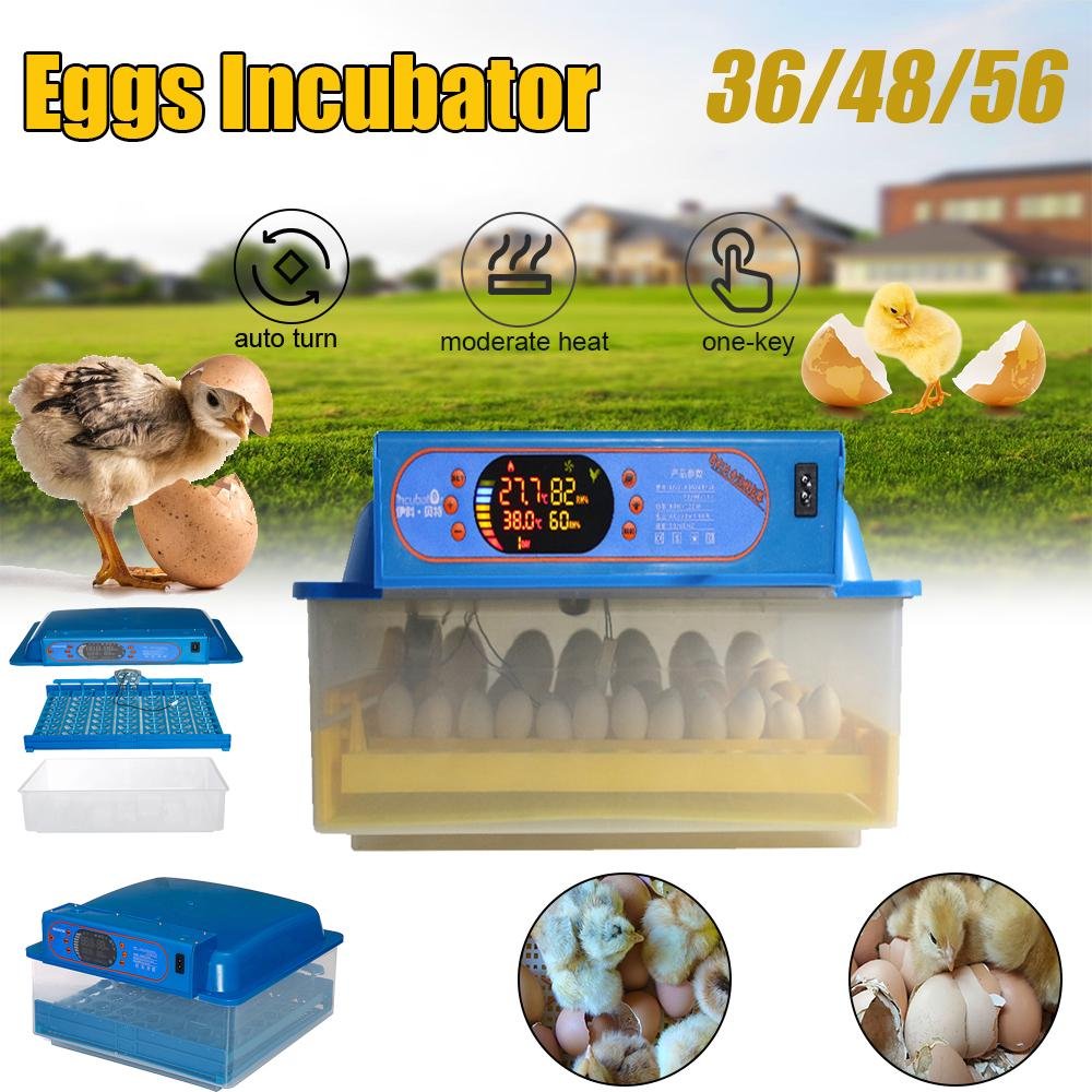 112 Egg Incubator Hatcher Egg Incubator for Hatching Eggs Auto-Turning Digital Control Chicken Duck Quail Eggs Incubator for Home Farm Hatchery