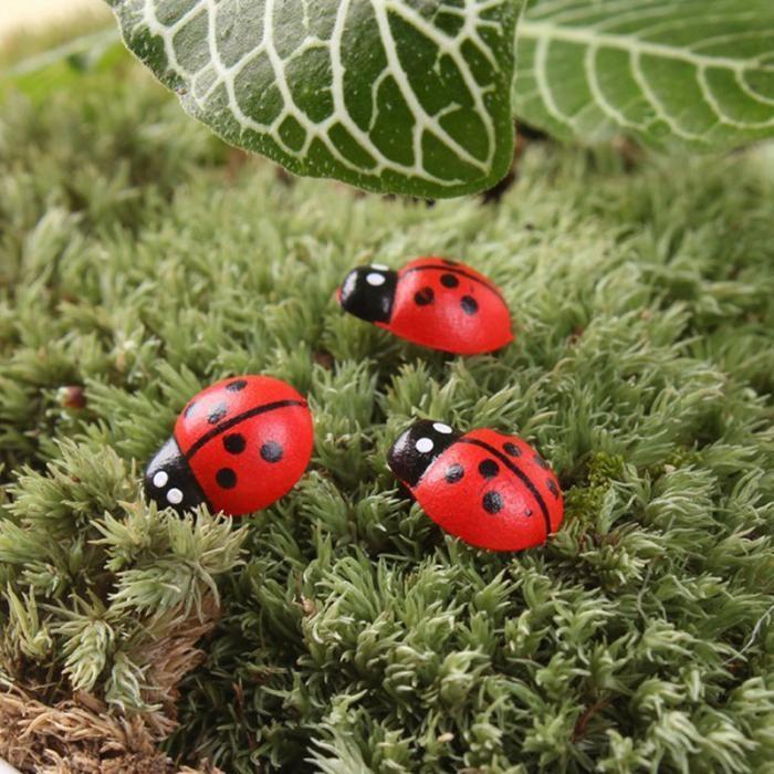 50//100pcs  Ladybird Garden Ornament Miniature Plant Pots Fairy DIY Dollhouse