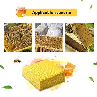 Bee Pipe Beekeeping Queen King Catch Cage Beekeeper Equipment Protection S