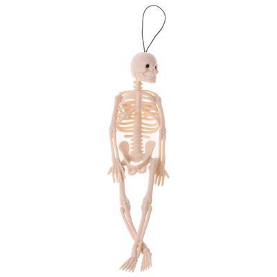 Movable Skeleton Human Model Pose Skull Full Body Mini Figure Toy Desk Ornament