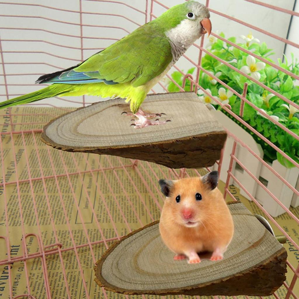 Schaukeln & Ringe Haustierbedarf Maus Papagei Vogel Spielzeug Katze Hamster Holz Hängend Haus Swing