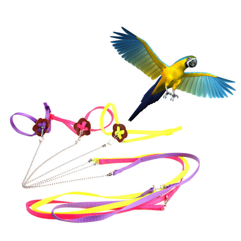 Parrot Adjustable Bird Harness Leash Training Rope Multicolor Light Soft Fashion