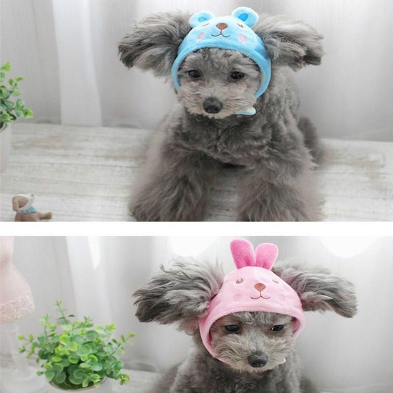 PetstyleQ萌动物园变身帽 头套 泰迪宠物狗狗个性可爱帽子