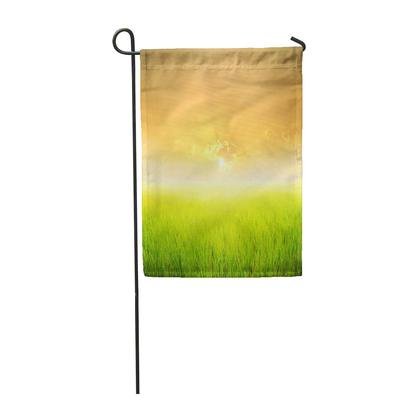 Yellow Barley Wheat Field Fresh Crop Of Farm Harvest Garden Flag House Banner 12x18inch 30x45cm Buy At A Low Prices On Joom E Commerce Platform