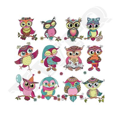 Owl Patches On Clothes Iron On Stickers For Child T-Shirts Parches  DIY Accessory Washable Applique