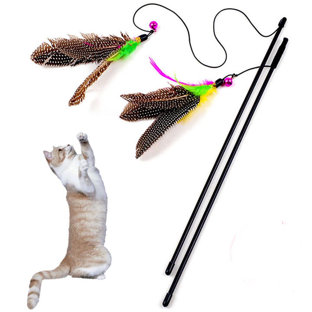 Lustige Katze / Kitten Haustier Vogel Feder Teaser Draht Chaser ...