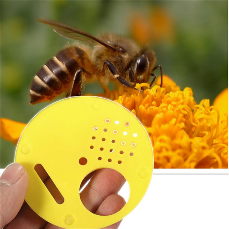 12x Plastic Beekeepers Bee Hive Nuc Box Entrance Gates Beekeeping Equip Tool New