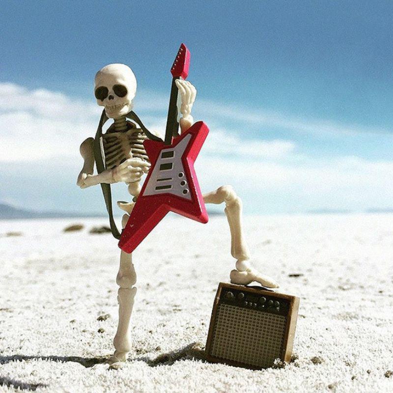 Skeleton Human Model Movable Pose Skull Full Body Mini Figure Desk Ornament Toy