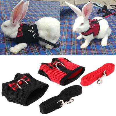 ... Soft Mesh Dog Cat Adjustable Vest Safe Collar Cloth. Buy · Pet Harness With Leash Rabbit Summer Chest Strap Puppy Small Animal Mesh Vest