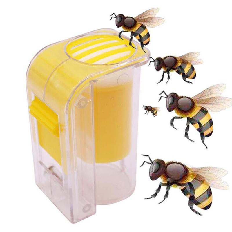 5pcs Plastic Hair Clip Queen Cage Bee Catcher Catch Beekeeper Tool