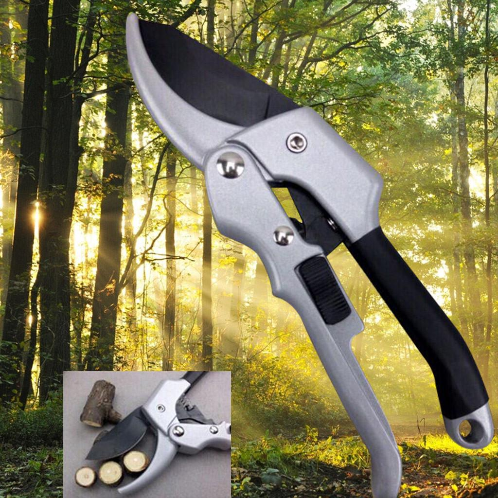 Garden Gardening Tree Fruit Pruning Pruner Scissor Shear Snip Trim Tool BrandNew