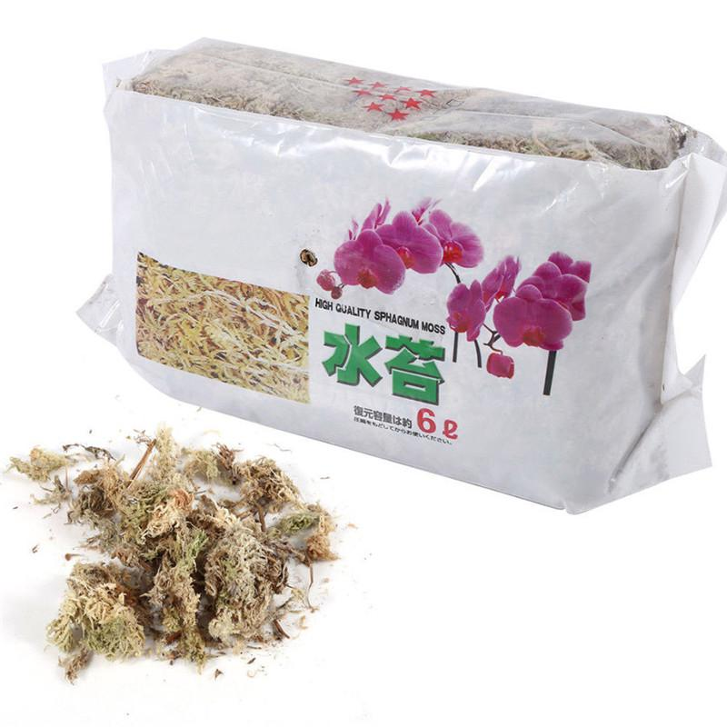 12L Garden Supply Sphagnum Moss Bryophyte Phalaenopsis Fertilizer Orchid J2A8