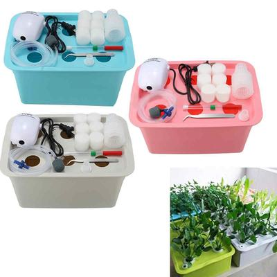 6 Plant Sites Deep Water Culture Air Pump Hydroponic System Plant Growing System