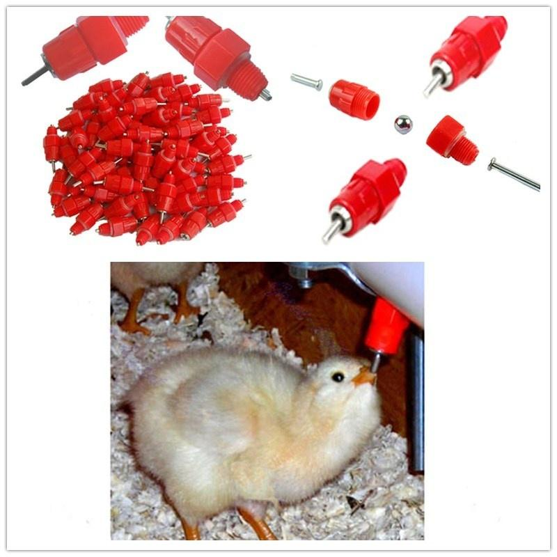 4Pcs Automatic Cups Chicken Waterer Poultry Bird Auto Feed Water PVC Practial