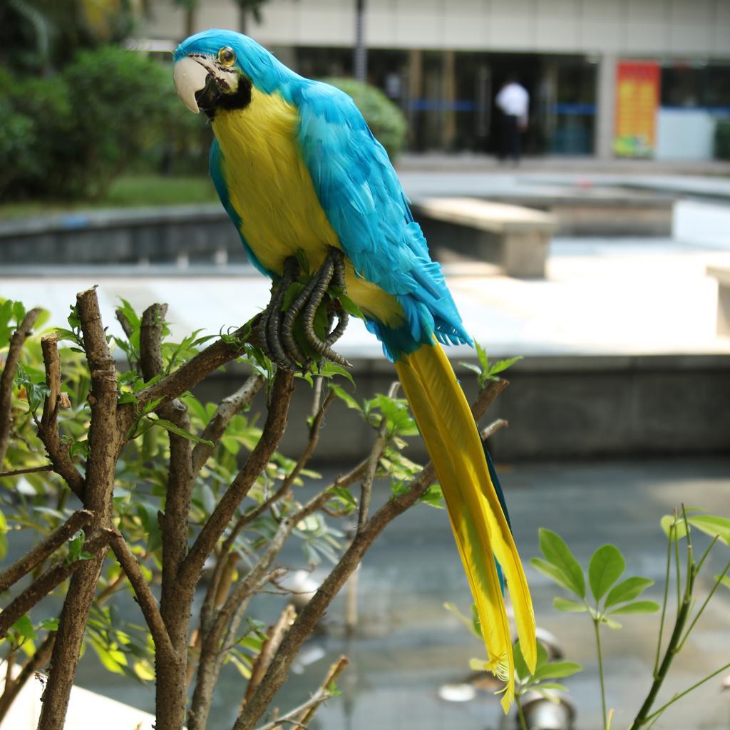 VARIOUS Artificial Feather Bird Large Parrot Ornament Animal Home Art Decor