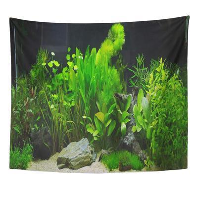 Underwater Fish Plant Aquarium Aquascaping Tank Cichlid River Ada Mousepad 9x10inch 22x25cm Buy At A Low Prices On Joom E Commerce Platform