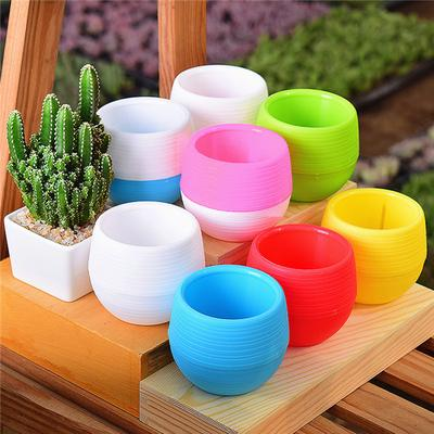 Mini Potted Plants Flower Pot For Home Office Decoration Colorful