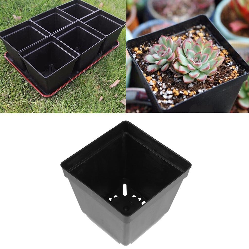 20 Pcs Plastic Orchid Planter Container Flower Pot Soilless Grow Basket