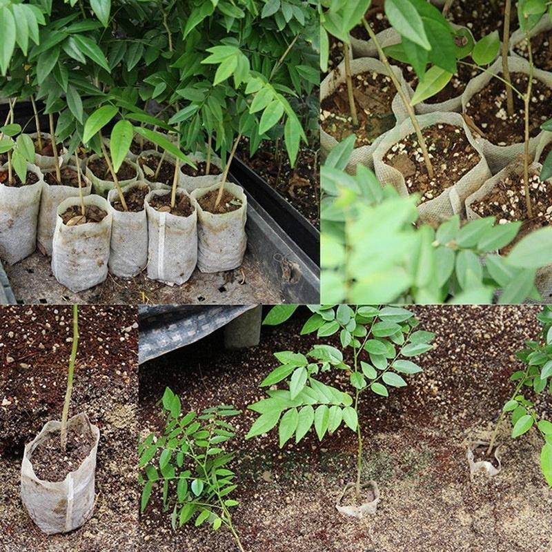 50//100pcs Plant Non-woven Nursery Pots Seedling Raising Bag Plants Garden Supply
