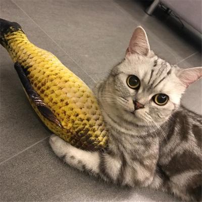 Кот и рыба | Пикабу | 400x400