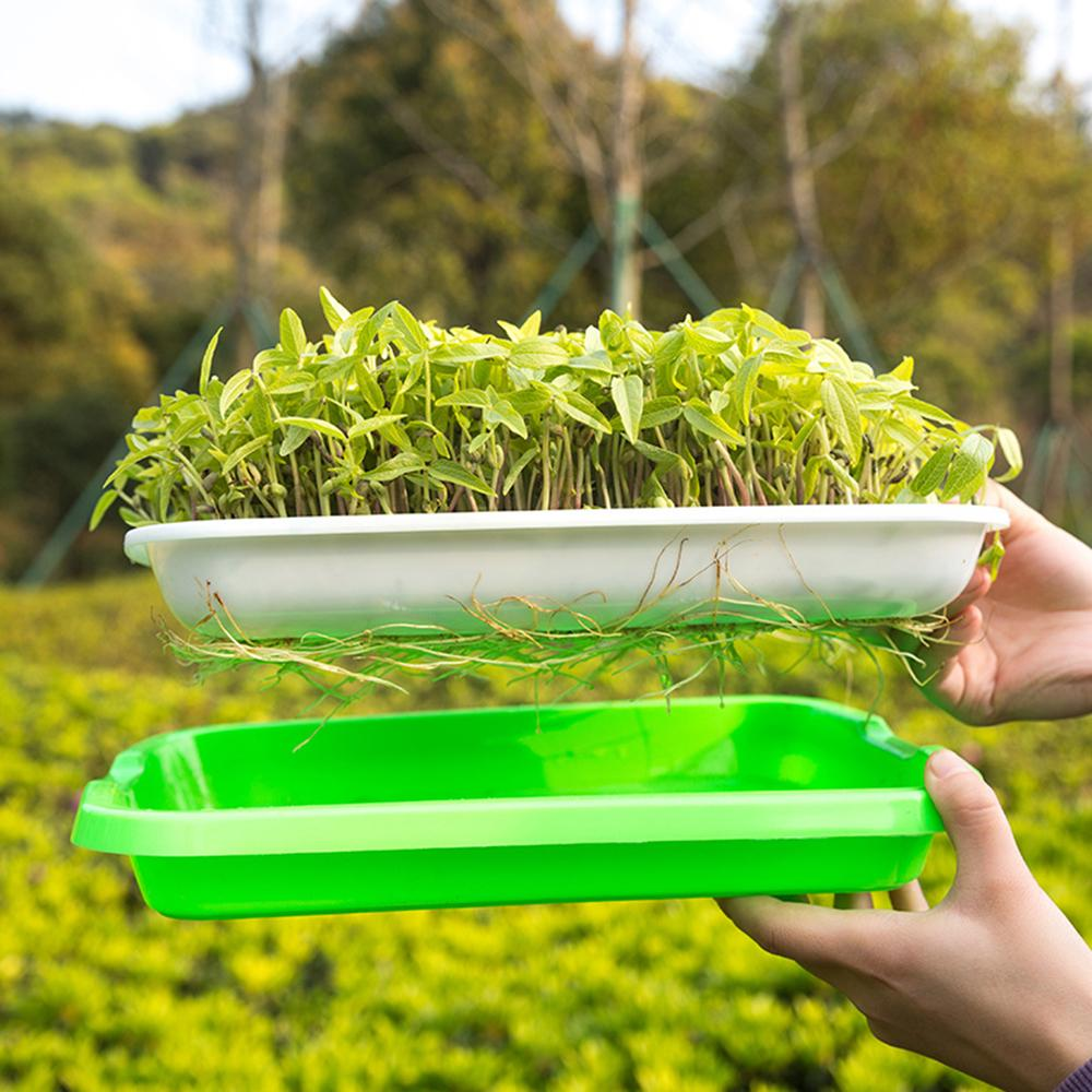 Double Layer Seed Sprouter Nursery Tray Hydroponics Basket Flower Plant Germination Tray Box Buy From 27 On Joom E Commerce Platform